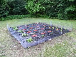 Garden Fence Decor Inspiring Garden Fence Decor Ideas For Your Dream Feelitcool Com