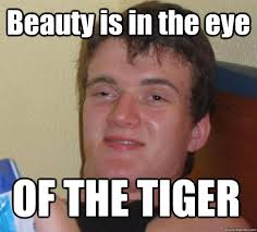 Eye Of The Tiger Meme - beauty is in the eye of the tiger 10 guy nerdy things