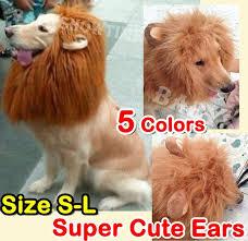 Extra Large Dog Costumes Halloween 25 Lion Costume Dog Ideas Pet Costumes
