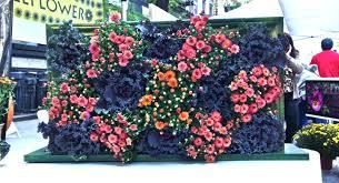 wallflower u201d living wall art suz scenery