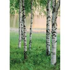 komar 100 in x 72 in romantic pop wall mural 4 749 the home depot nordic forest wall mural