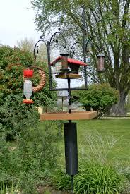 backyard bird feeding station birds u0026 birdhouses pinterest