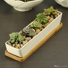 modern style decorative white rectangle ceramic crafts succulent