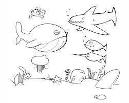 imagenes animales acuaticos para colorear de animales marinos para colorear fondo marino para pintar