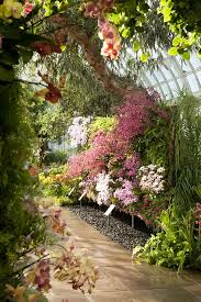 Ny Botanical Garden Membership The Orchid Show Ny Botanical Garden Extraordinary Favorite