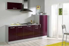 cuisine couleur aubergine couleur meuble de cuisine luxe inspirations avec cuisine couleur