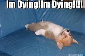 Dying Memes - meme maker im dyingim dying
