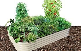 fruit u0026 vegetable growing