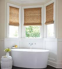 privacy window treatments dragon fly