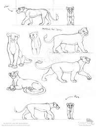 lioness sketches by strecno on deviantart