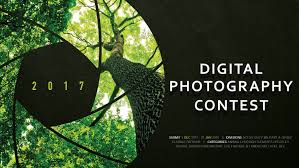 Digital Photography Digital Photography Contest Armymwr