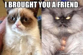 Grumpy Cat Meme Generator - i brought you a friend colonel meow vs grumpy cat meme generator