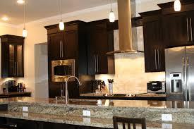 Kitchen Cabinet Gallery Unique Kitchen Cabinets Home Decoration Ideas