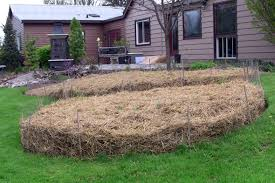 sheet mulching follow this advice for the best mulch