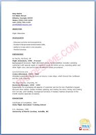 Sample Pilot Resume by Flight Attendant Resume Template
