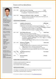 curriculum vitae for job application pdf job apply resume sle format for application cv sles pdf a