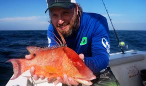 hogfish on the hook florida sportsman