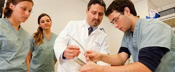 Medical Student R by Admissions Timeline David Geffen Of Medicine Los