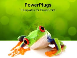images of frog backgrounds for powerpoint sc