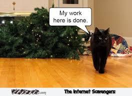Christmas Tree Meme - my work here is done funny christmas tree cat meme pmslweb