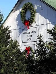 valley view tree farm