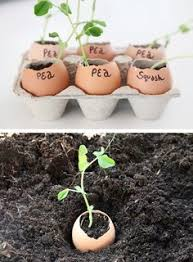 23 Diagrams That Make Gardening by Learn More At Https Www Rootfarm Com Gardening That I Love