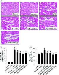 hypouricemic effects of mesona procumbens hemsl through