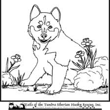 coloring pages husky puppy kids drawing coloring pages