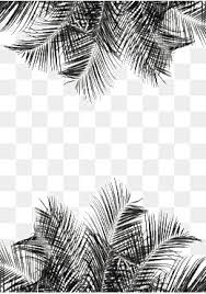 palm leaves png images vectors and psd files free download on