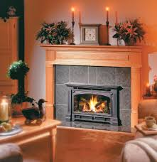 appealing and pleasant zero clearance fireplace insert meant for