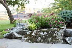 vermont native plants gardening di stefano landscaping