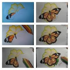 butterfly on the flower drawing step by step by inesartist on