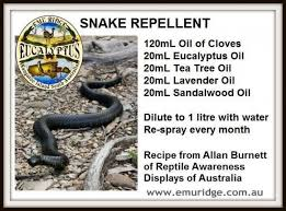 How To Avoid Snakes In Backyard 1000 Images About Keepin Snakes Out On Pinterest