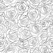 beautiful pattern beautiful black and white seamless pattern in roses with contours