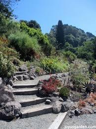Berkeley Botanical Gardens The Berkeley Botanical Garden
