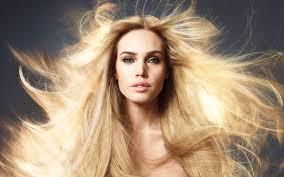 moda milano hair hair salon clearwater