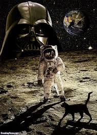 black cat on the moon pictures freaking