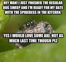 Spider Meme Misunderstood Spider Meme - list of synonyms and antonyms of the word misunderstood spider