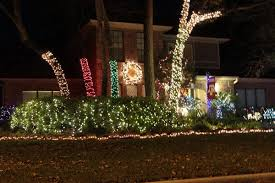 wrap trees in lights this in livingston nj essex county
