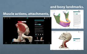 3d Human Anatomy Atlas Download Human Anatomy 7 4 01 For Mac Free Cracked