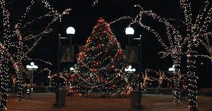 mayors christmas tree lighting