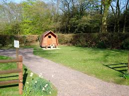 forest glade forest glade holiday park cullompton devon pitchup com
