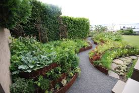 vegetable garden ideas design accessories u0026 pictures zillow