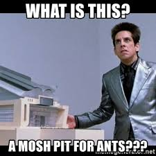 Mosh Pit Meme - what is this a mosh pit for ants zoolander for ants meme