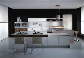houzz kitchen trends report modern kitchen ideas