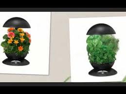 Indoor Garden Kit Miracle Gro Aerogarden 3 Pod Indoor Garden With Gourmet Herb Seed