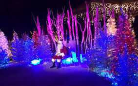 christmas light show los angeles l a zoo lights discount tickets spectacular light show