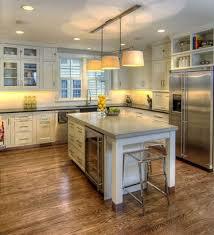 Built In Refrigerator Cabinets Doors Beside Built In Fridge Side Cabinet Fridge In Shelves