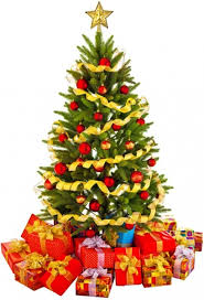 christmas tree pictures beautiful christmas tree 02 hd picture free stock photos in image