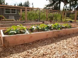 Deer Proof Fence For Vegetable Garden 2012 July